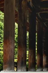 金堂を支える柱(エンタシス)