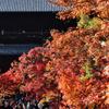 南禅寺の秋(1)