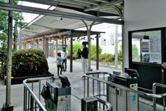 コケ玉の駅(2)