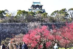 大阪城梅林景色(1)