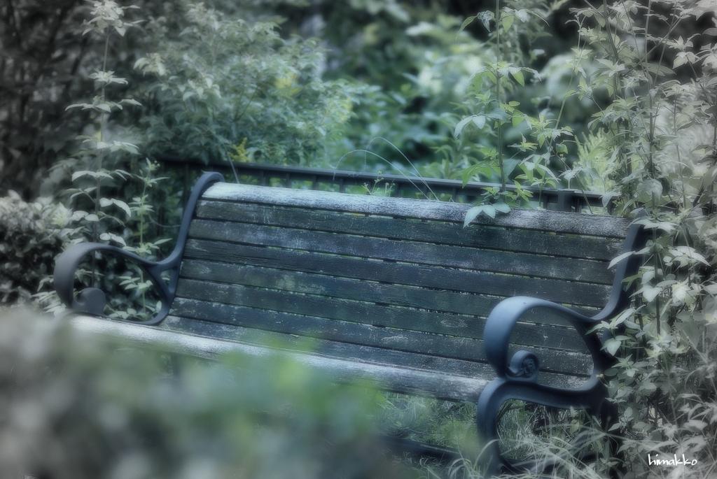 朽ちかけてるベンチ