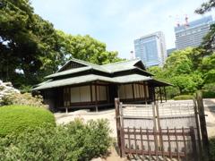皇居東御苑6