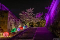姫路城 和傘幻想 華灯り 3
