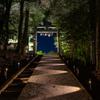 武雄神社 ライトアップ 5