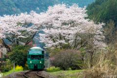 JR久大本線 桜トンネル