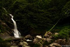見返りの滝 ホタル 2