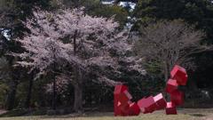 ときわ公園の春・19
