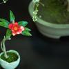 アート盆栽( つばき・6)