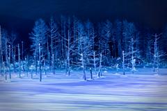 夜の青い池2