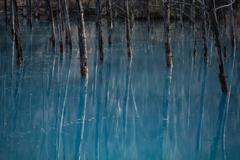 早朝青い池