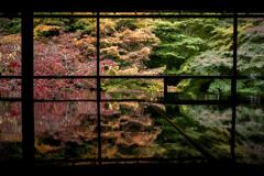 秋の瑠璃光院2