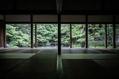 春の蓮華寺1