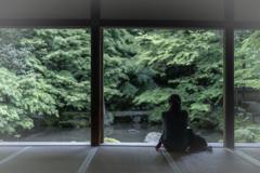 春の蓮華寺3