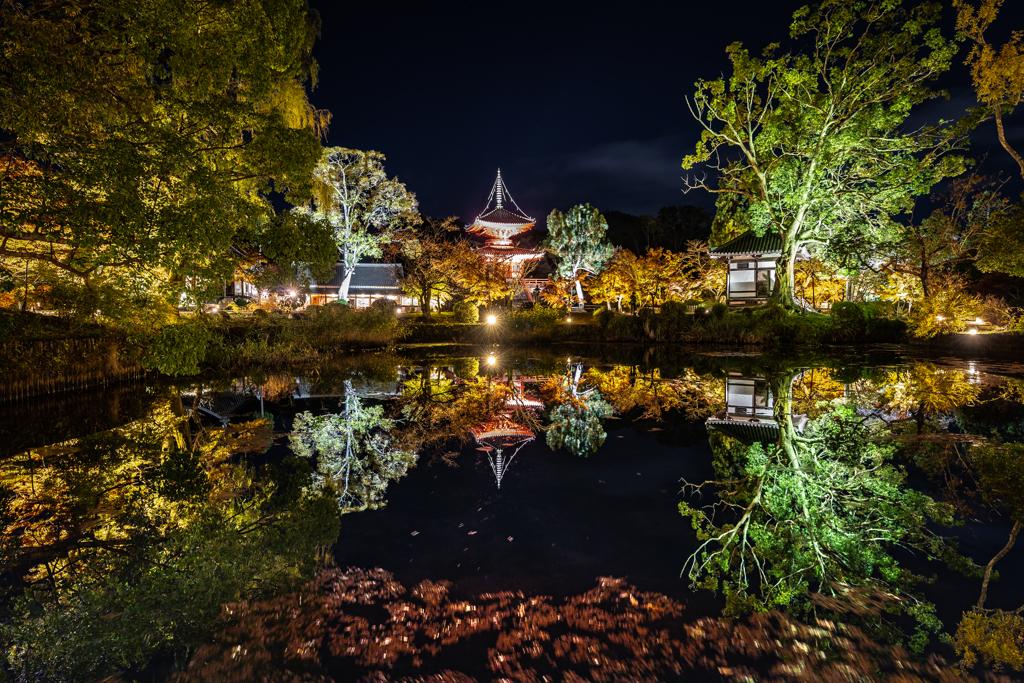 夜の大覚寺