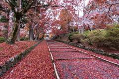 秋の毘沙門堂1