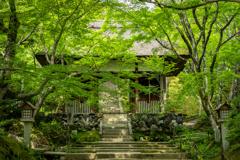 緑の常寂光寺1