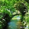 静かな川♪