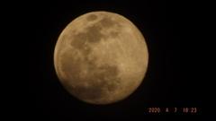 2020/04/07(火)のお月様