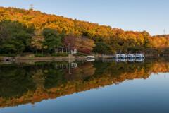 ボート池の景色