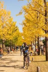 秋を撮る人