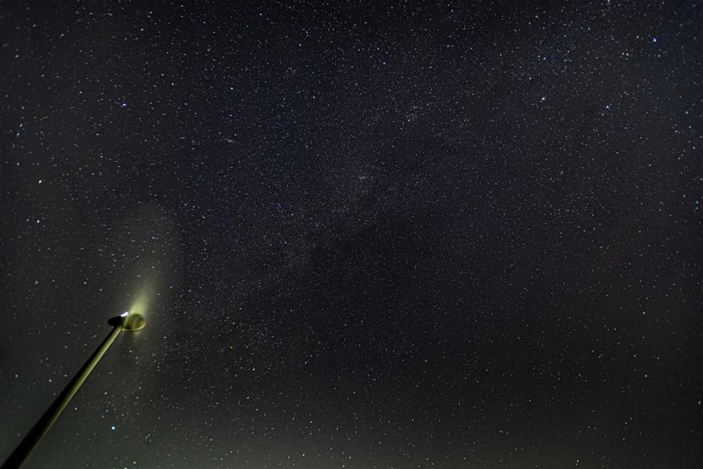冬の夜空に