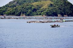 のどかな漁村の風景3