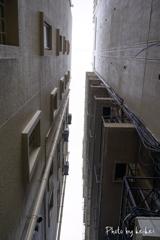 小路の天井