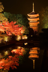 東寺ー秋ー  あ、初冬でした