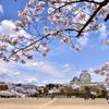 青空に映える姫路城3