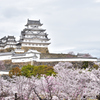 2021春姫路城 1