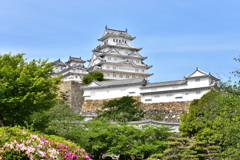 2021春姫路城 10