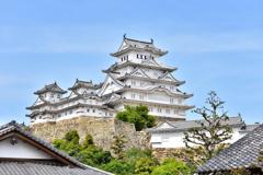 2021春姫路城 5