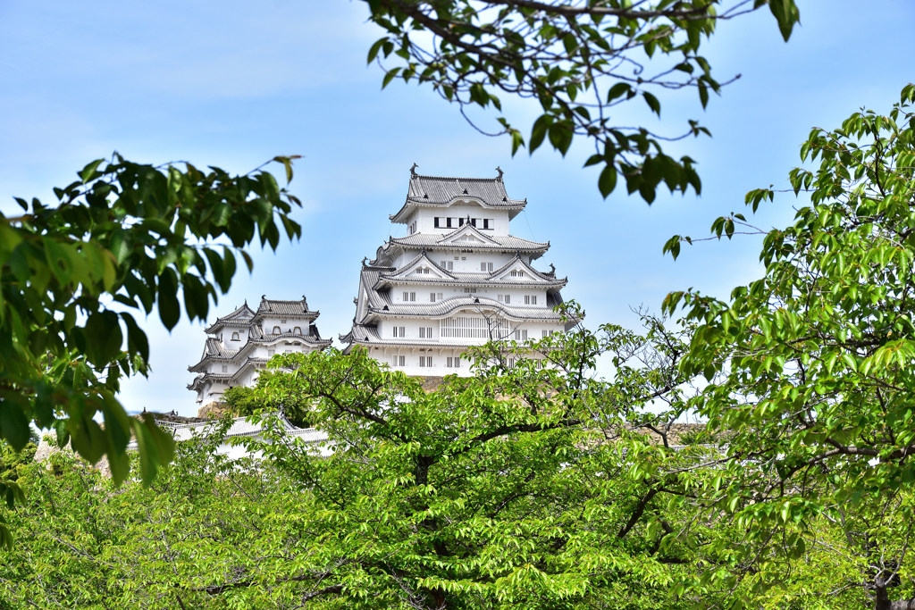 2021春姫路城 13