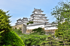 2021春姫路城 6