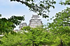 2021春姫路城 11