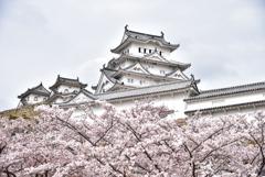 2021春姫路城 2