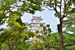2021春姫路城 7