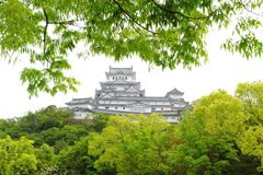 新緑 姫路城