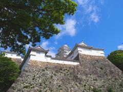 姫路城 新緑1