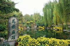 鳶飛魚躍~中国 Hawk flies and fishes leap