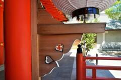 生田神社~神戸三宮 Ikuta Shrine's Hearts