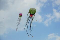 凧揚げ~中国 Popular Kite Flying