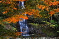 深秋の渓谷