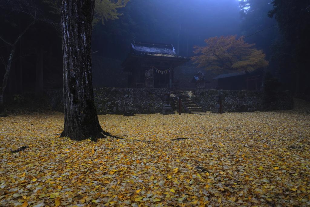 境内の落黄葉