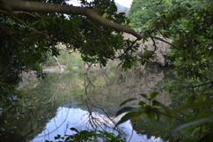 ため池 西油山