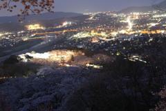 桜と夜景#2