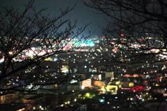 桜のつぼみと夜景