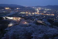 桜と夜景#1