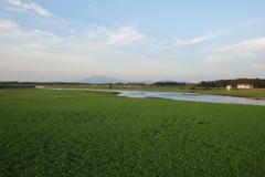 小貝川 福岡堰