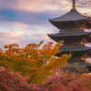夕景の東寺